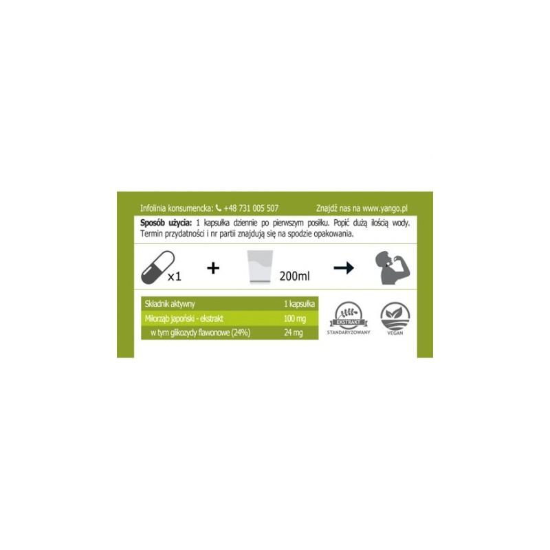 Ginkgo biloba - ekstrakt - 90 kapsułek