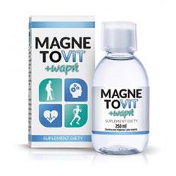 MagnetoVIT- suplement...